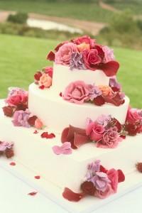Wedding Insurance - Cake